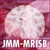 Japanese Macaque Monkey-the MRI standard brain