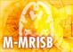 Marmoset-the MRI Standard brain